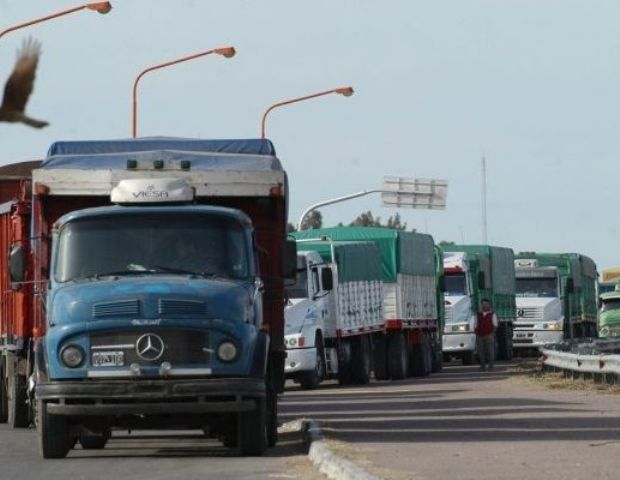 direccion general transporte transito automotor: