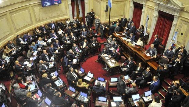"""Tras 17 horas de debate, el Senado le dijo """"no"""" a la legalización del aborto"""