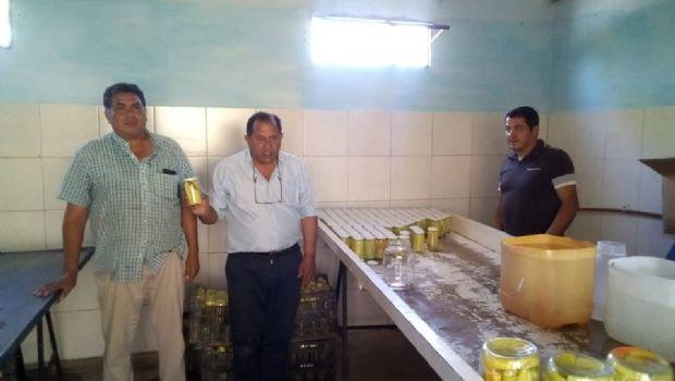 Promueven la producción de hortalizas